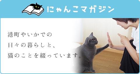 にゃんこマガジン